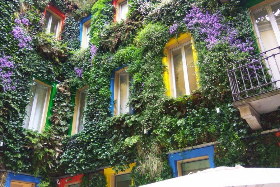 cortile con pareti di verde verticale