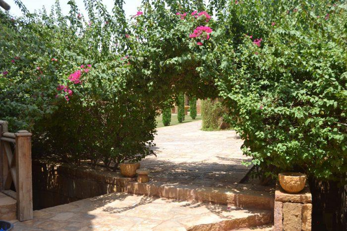 Soglia di pietra e bouganvilee in un giardino a Riyadh
