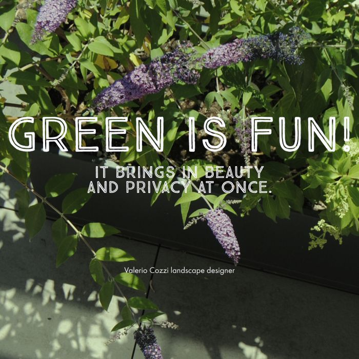 green is fun!