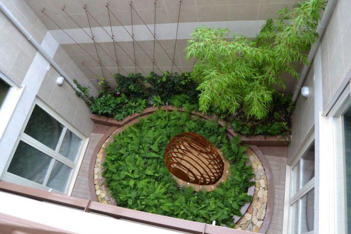 bambù in interni