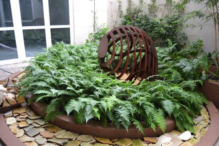 giardino all'improvviso con felci e scultura in corten