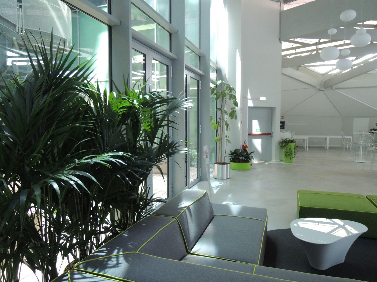verde d'interni nella hall raimondi della forgiatura