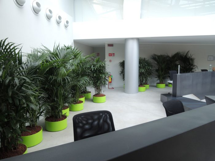 la-forgiatura-hall-raimondi-indoor-green-valerio-cozzi (6)