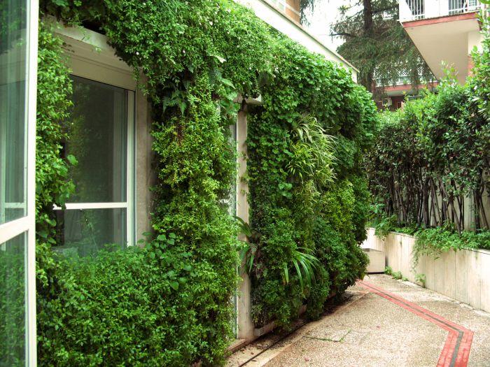 piccolo edificio con muri attrezzati con verde verticale a roma