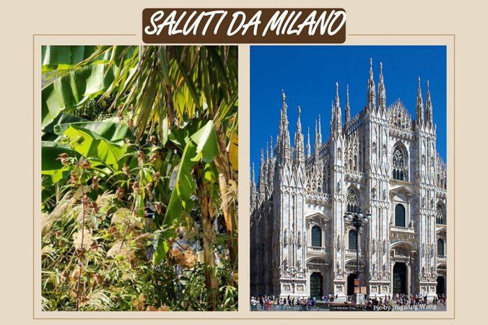 Cartolina da Milano e climate change